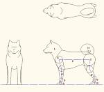 犬モデル化 点景・計画用  DXF