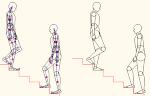 人物モデル化(成人男性階段上り下り) DXF