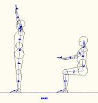 人物モデル化 (成人男性側面)  DXF