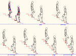 人物モデル化(成人男性) 階段勾配比較 MPZ