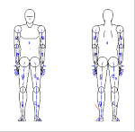 人物モデル化 (成人男性 正面背面立ち姿)  JWW