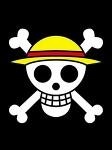 将来海賊王になる団体の旗