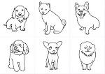 犬 PART-1