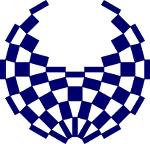 組市松紋(パラリンピック)